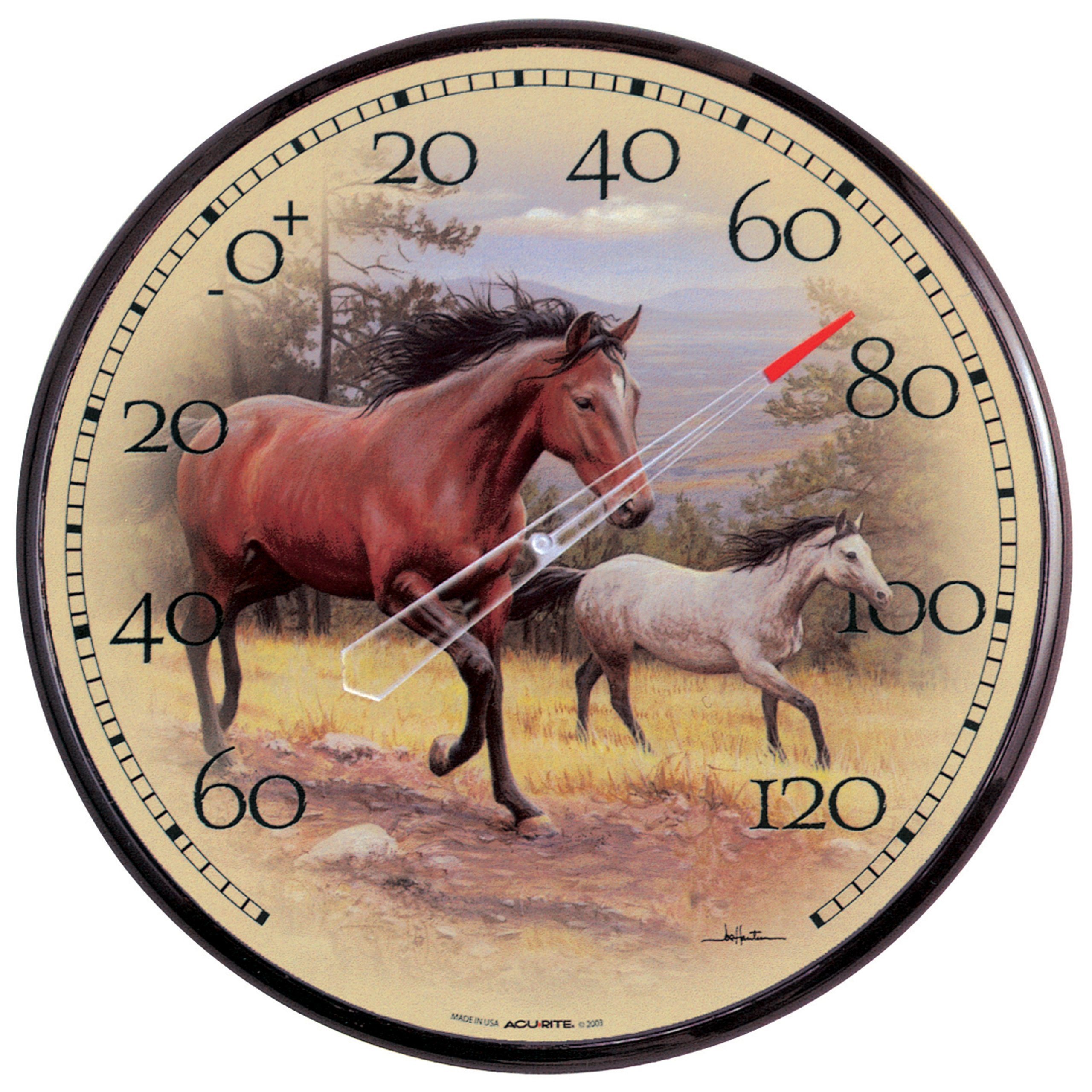 AcuRite 01839 12.5-Inch Wall Thermometer, Horses