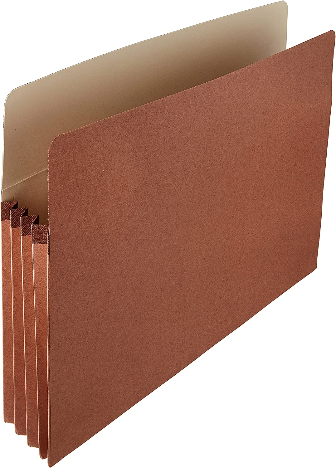 Basics Expanding Accordian Organizer File Folders - Letter Size, 25-Pack : Office Products