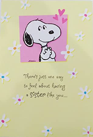 Amazon peanuts snoopy happy birthday sister greeting card peanuts snoopy happy birthday sister greeting card m4hsunfo