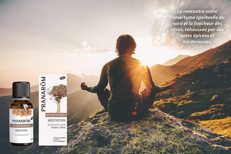 Pranarom Meditación Aceite Difusión, 30 ml, Pack de 1: Amazon.es ...