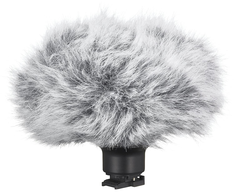 Canon サラウンドマイクロフォン SM-V1   B0034792VE