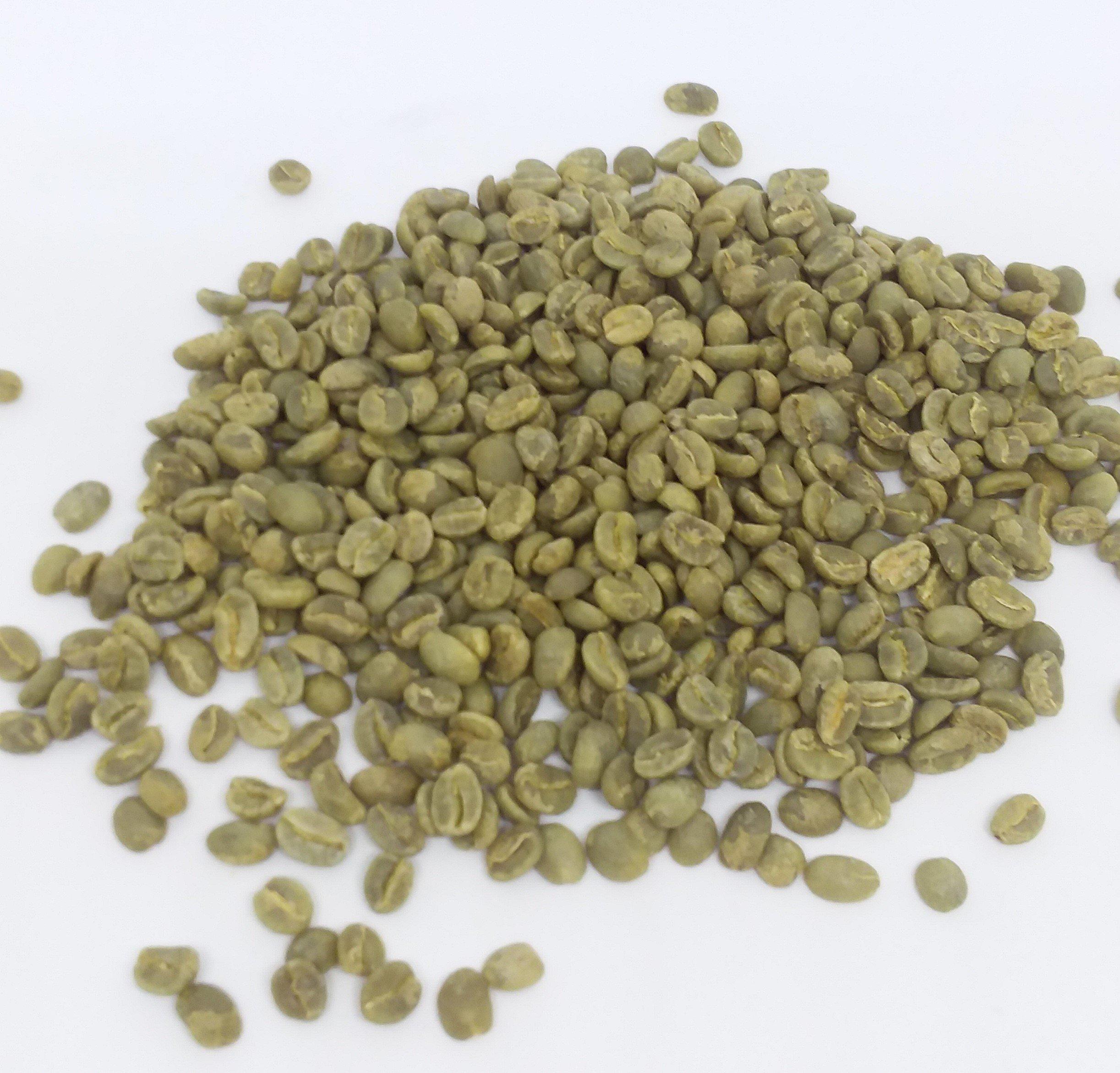 Colombian Green Coffee,Unroasted Coffee Beans Single Origin Farm El Nivel (10 Lb) by Lot # 017-104