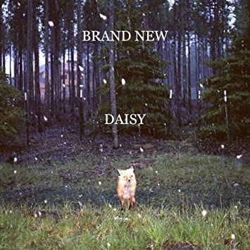 Image result for brand new daisy