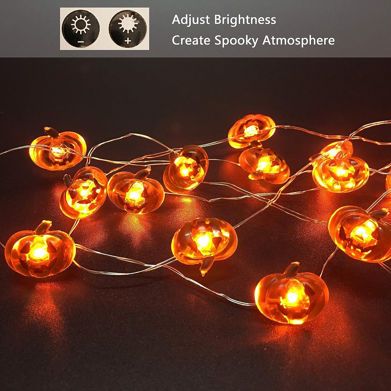 Amazoncom Halloween Pumpkin String Lights, 40Led Pumpkin String Lights Indooroutdoor,