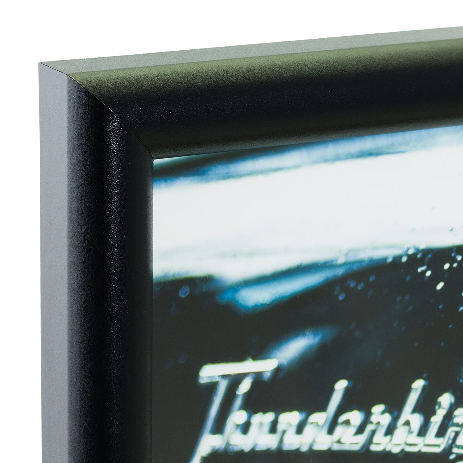 Smooth Finish Black Craig Frames fw2bk 20 by 30-Inch Picture Frame 0.765-Inch Wide