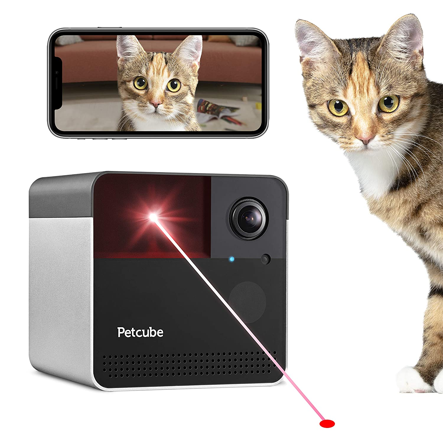 New 2019 Petcube Play 2 Wi-Fi Pet Camera with Laser Toy Alexa Built-In, for Cats Dogs. 1080P HD Video, 160 Full-Room View, 2-Way Audio, Sound Motion Alerts, Night Vision, Pet Monitoring App
