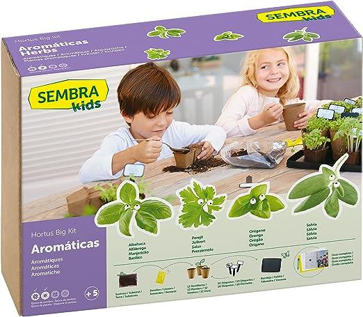 SEMBRA - juego educativo, Kit huerto Aromáticas: Amazon.es: Jardín