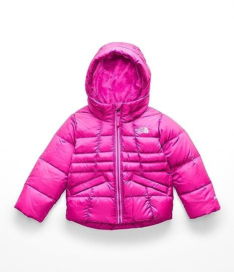 038e5449856f Amazon.com  The North Face Toddler Girl s Moondoggy 2.0 Down Jacket   Clothing