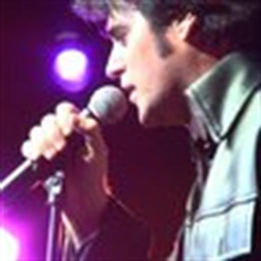 Elvis Tribute Artist - 6