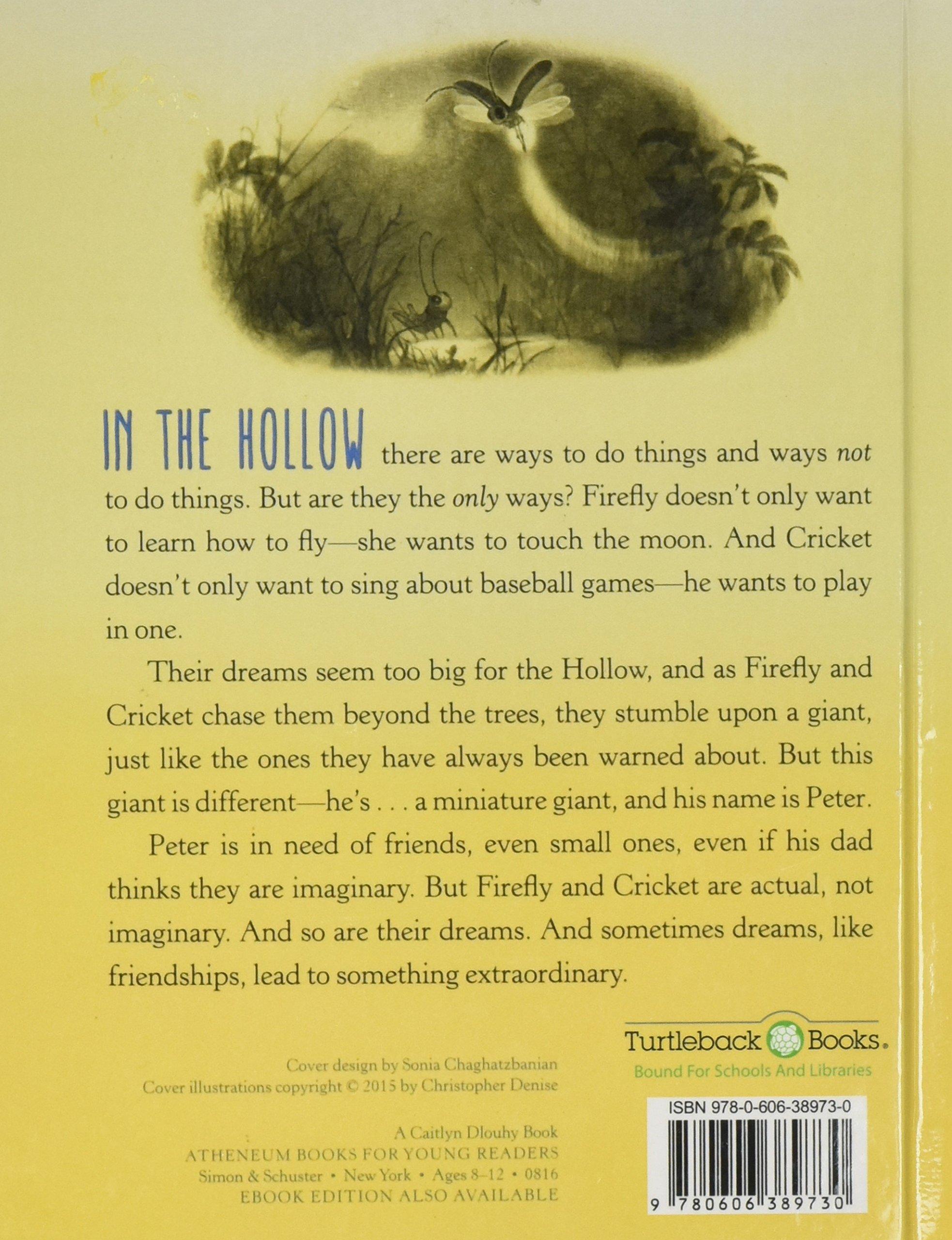 firefly hollow turtleback u0026 library binding edition