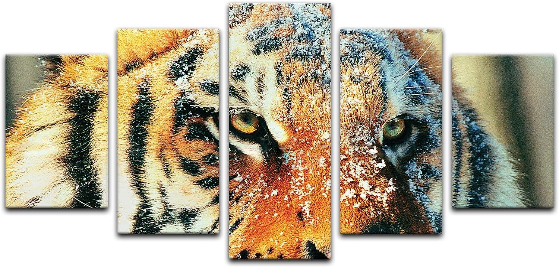 Bilderdepot24 Cuadros en Lienzo Tigre en la Nieve 140 x 65 cm 4 Piezas - Listo tensa, Directamente Desde el Fabricante: Amazon.es: Hogar