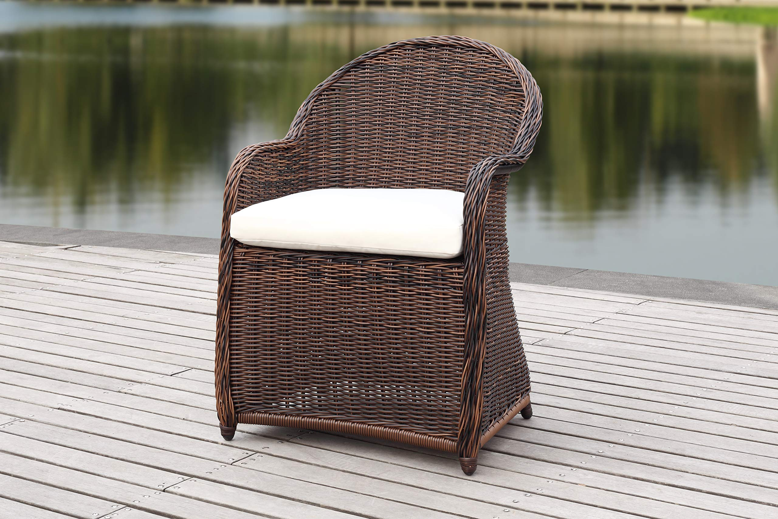 Safavieh PAT2509B Outdoor Collection Newton Brown and Beige Wicker Cushion Arm Chair