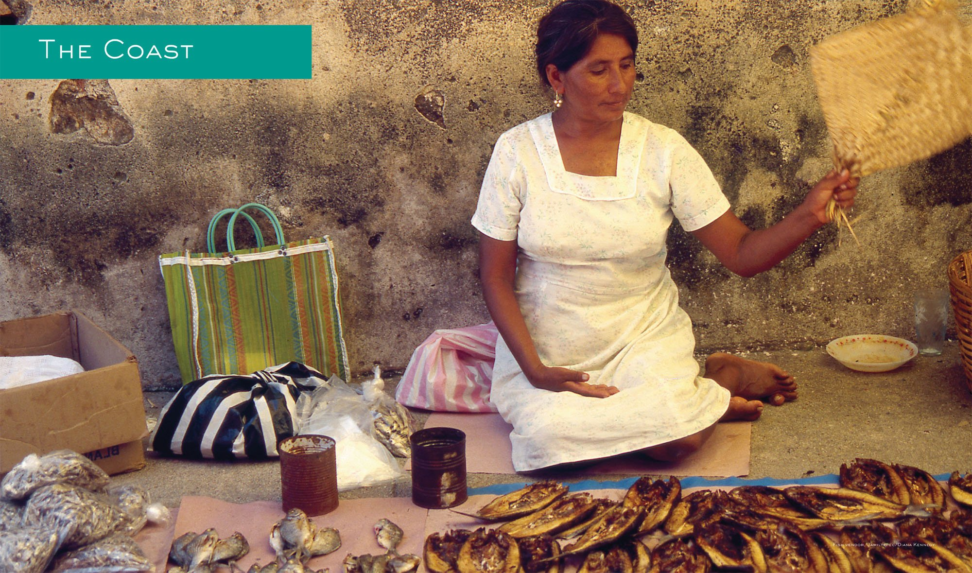 Oaxaca al gusto an infinite gastronomy the william and bettye oaxaca al gusto an infinite gastronomy the william and bettye nowlin series in art history and culture of the western hemisphere diana kennedy fandeluxe Gallery