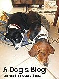 A Dog's Blog