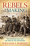 Rebels in the Making: The Secession Crisis and the Birth of the Confederacy