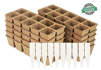 Self watering seed starting trays diy sweepstakes