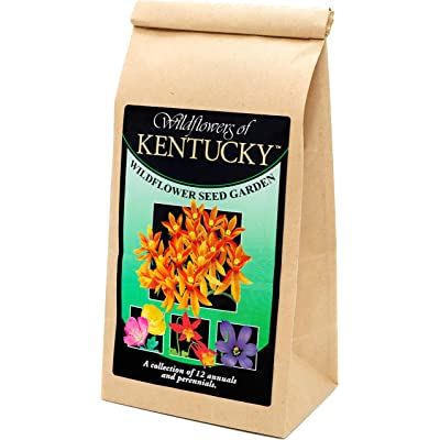 Kentucky Wildflower Seed Mix - A Beautiful Collection of Twelve annuals and perennials - Enjoy The Natural Beauty of Kentucky Flowers in Your own Home Garden : Garden & Outdoor