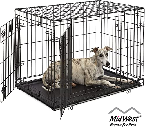 Dog Crate 1636DDU MidWest Life Stages 36 Double Door Folding Metal Dog Crate Divider Panel, Floor Protecting Feet, Leak-Proof Dog Tray 36L x 24W x 27H Inches, Intermediate Dog Breed