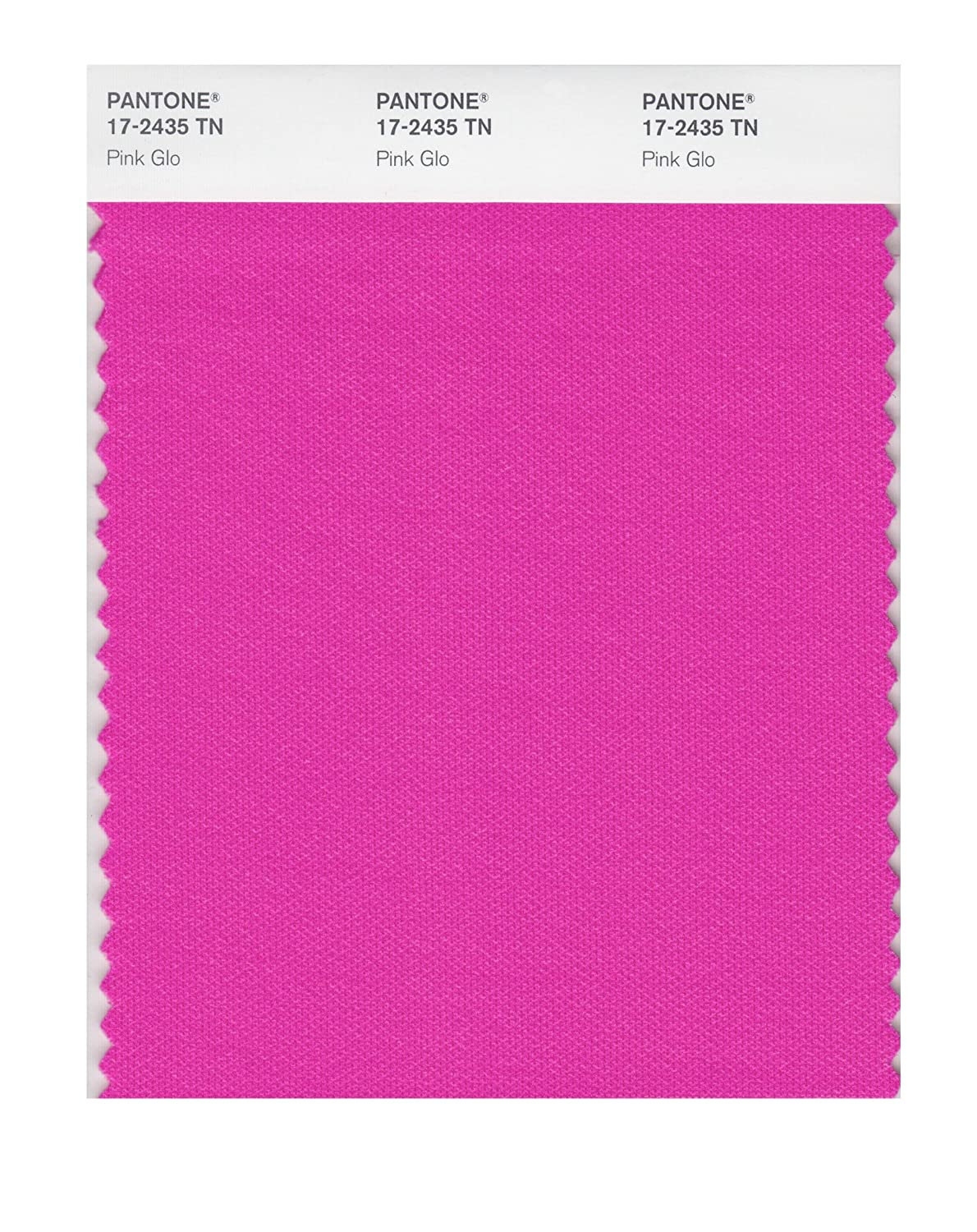 Pantone 17-2435 Nylon Brights Color Swatch Card - House Paint - Amazon.com