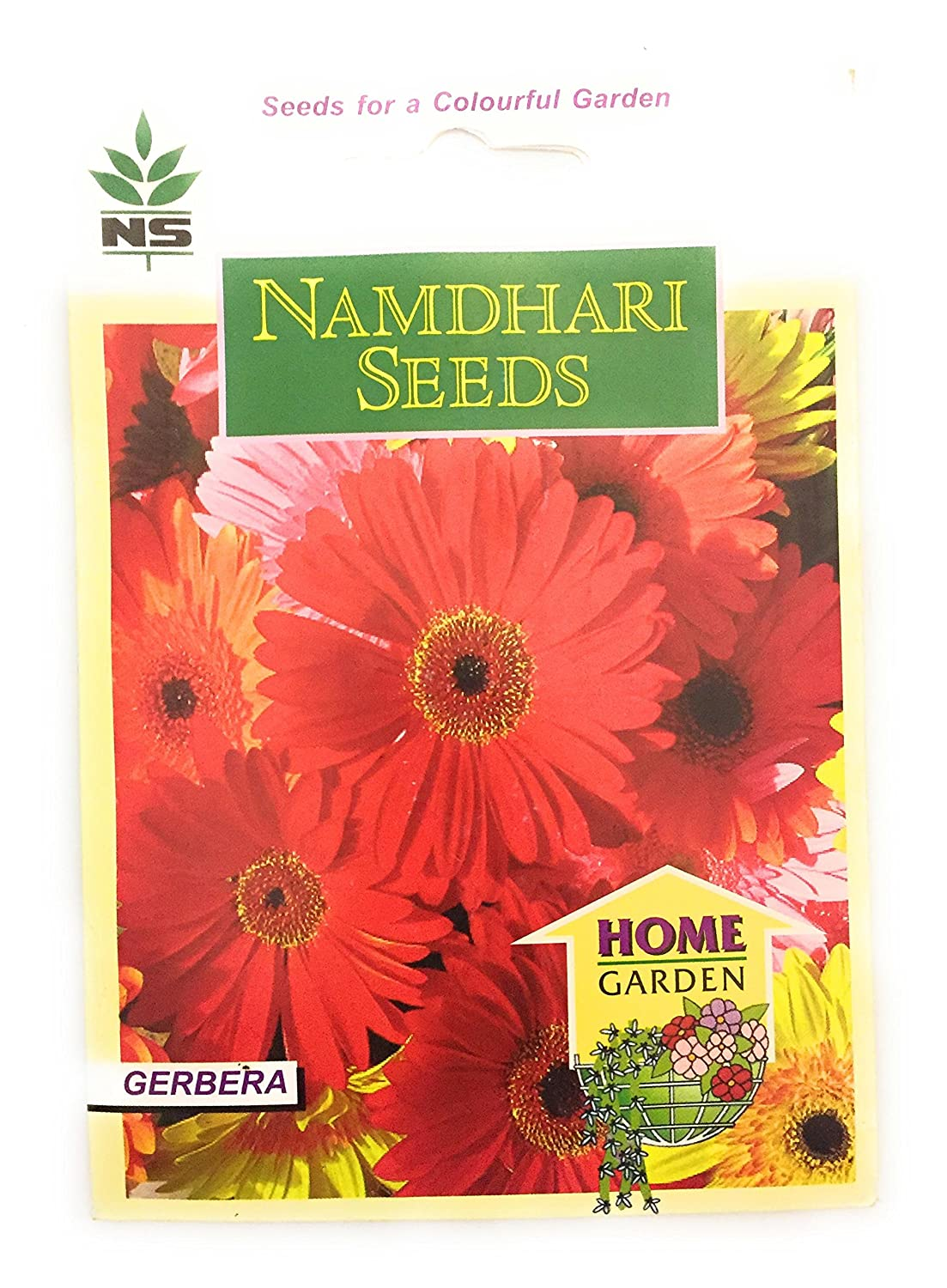 Namdhari seeds gerbera flower pack of 5 amazon garden outdoors izmirmasajfo