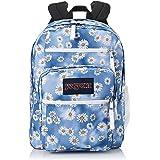 JanSport Traditional Backpacks, Daisy Haze, One Size