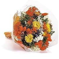 Bouquet-Fantasy- Sanremo fiori essiccati dalla Riviera dei Fiori