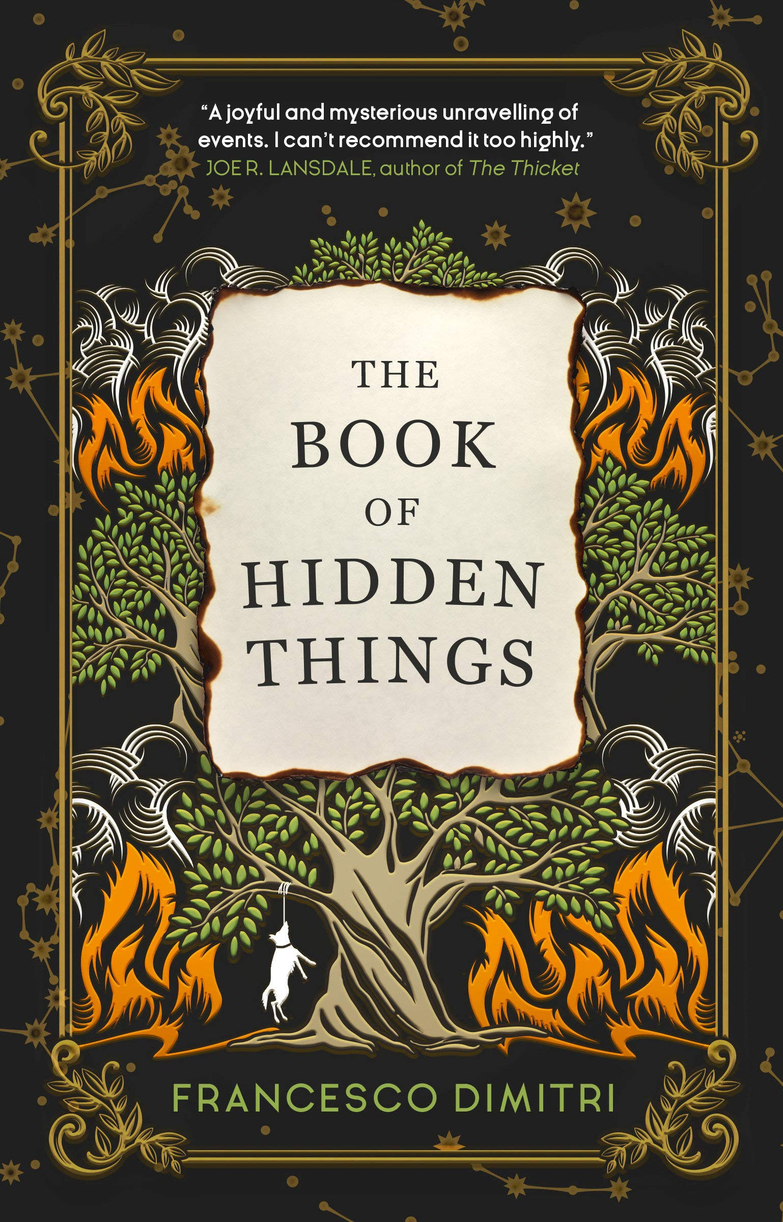 Amazon.com: The Book of Hidden Things (9781785657078): Francesco Dimitri:  Books