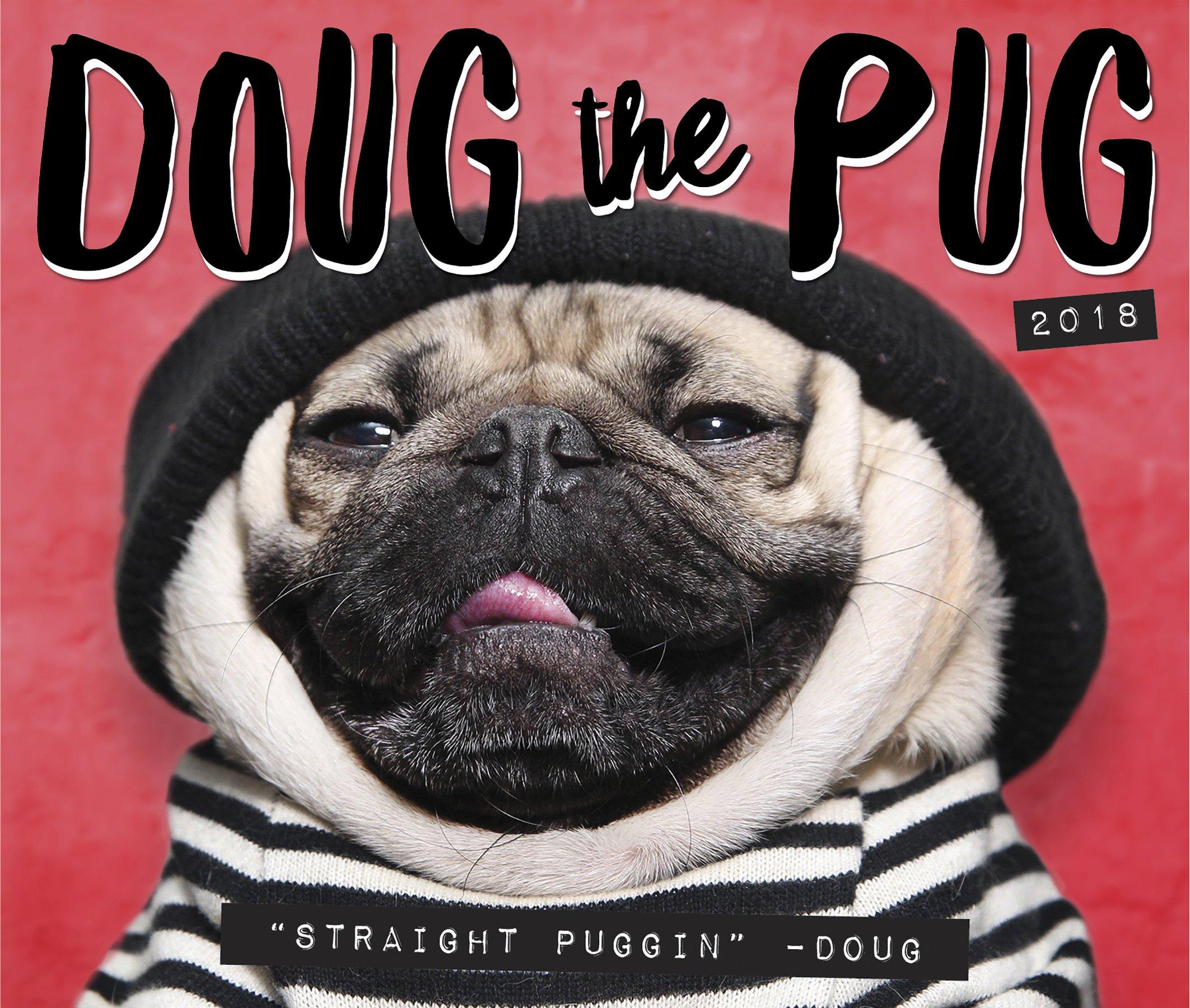 Doug the pug 2018 box calendar leslie mosier 9781682346761 amazon doug the pug 2018 box calendar leslie mosier 9781682346761 amazon books m4hsunfo