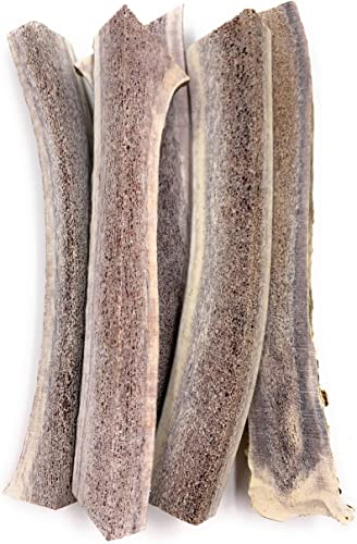 Elk Antlers for Dogs, Grade-A, Premium Antler Chews for Dogs. USA Product, Long Lasting Bully Stick
