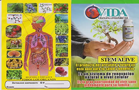 Amazon.com: Stemstem Alive Supplements LOT of 2 New & Factory Sealedalive 90 Capsules by Stem Alive: Health & Personal Care