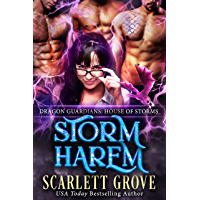 Storm Harem: House of Storms (Reverse Harem Romance) (Dragon Guardians Book 5) (English Edition)