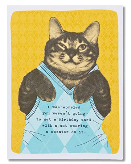 Amazon American Greetings Funny Sweater Cat Birthday Card With