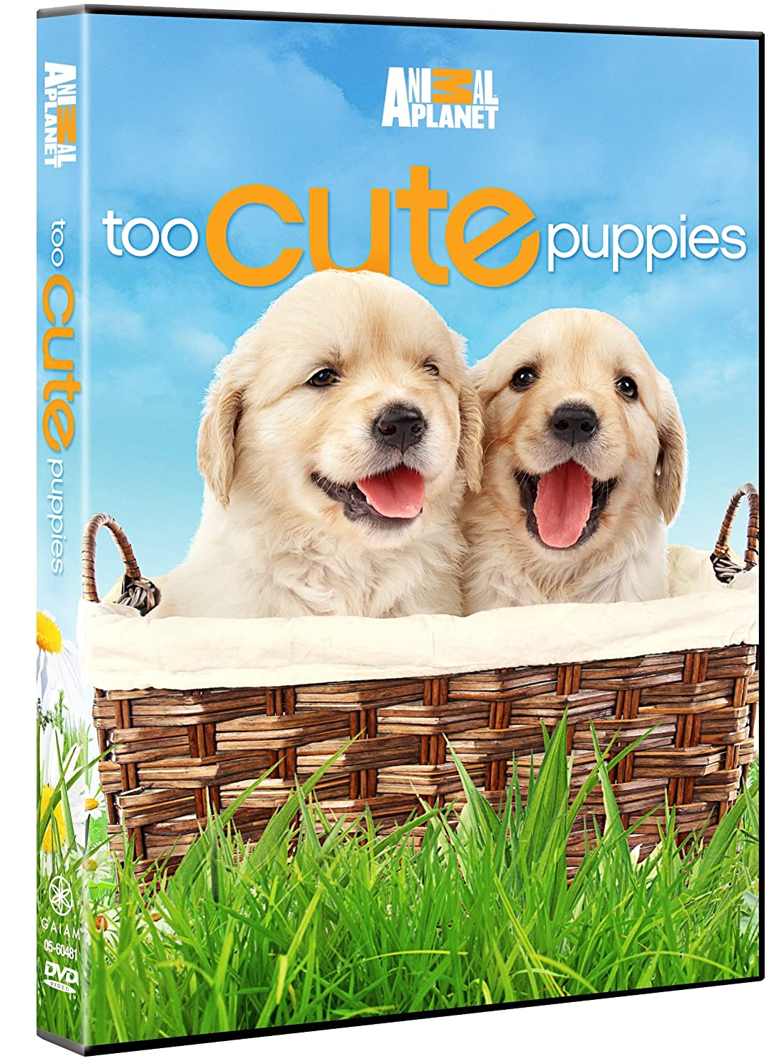 Amazon.com: Too Cute Puppies: Puppies, Animal Planet: Movies & TV