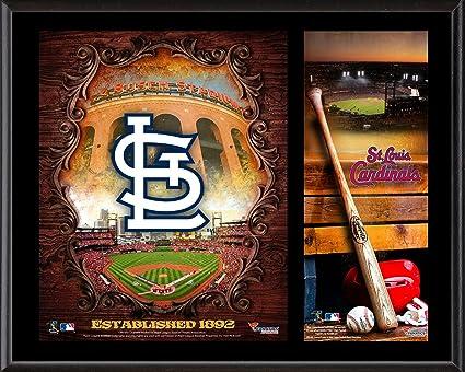 sports shoes 54332 0d67a St. Louis Cardinals Sublimated 12