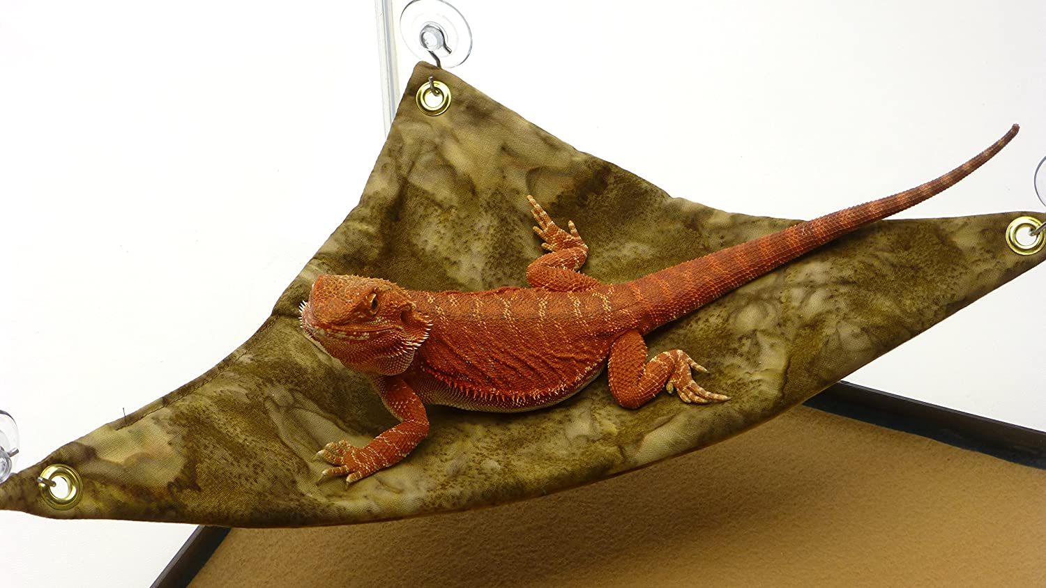 Leopard Geckos Small Hammock for Baby Bearded Dragons Sugar Gliders Or Other Small Animals SH33