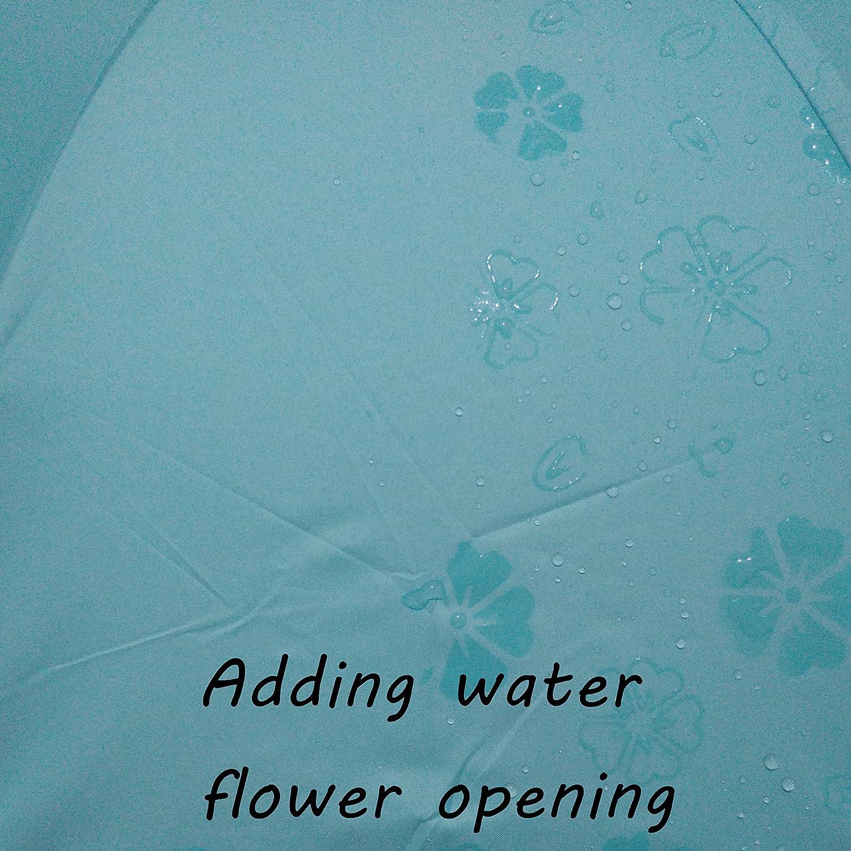 Bleu ciel Parapluies pliants Ombrelle Parasol magique l/éger Preuve dUV 8 os parapluie pour les femmes et les hommes