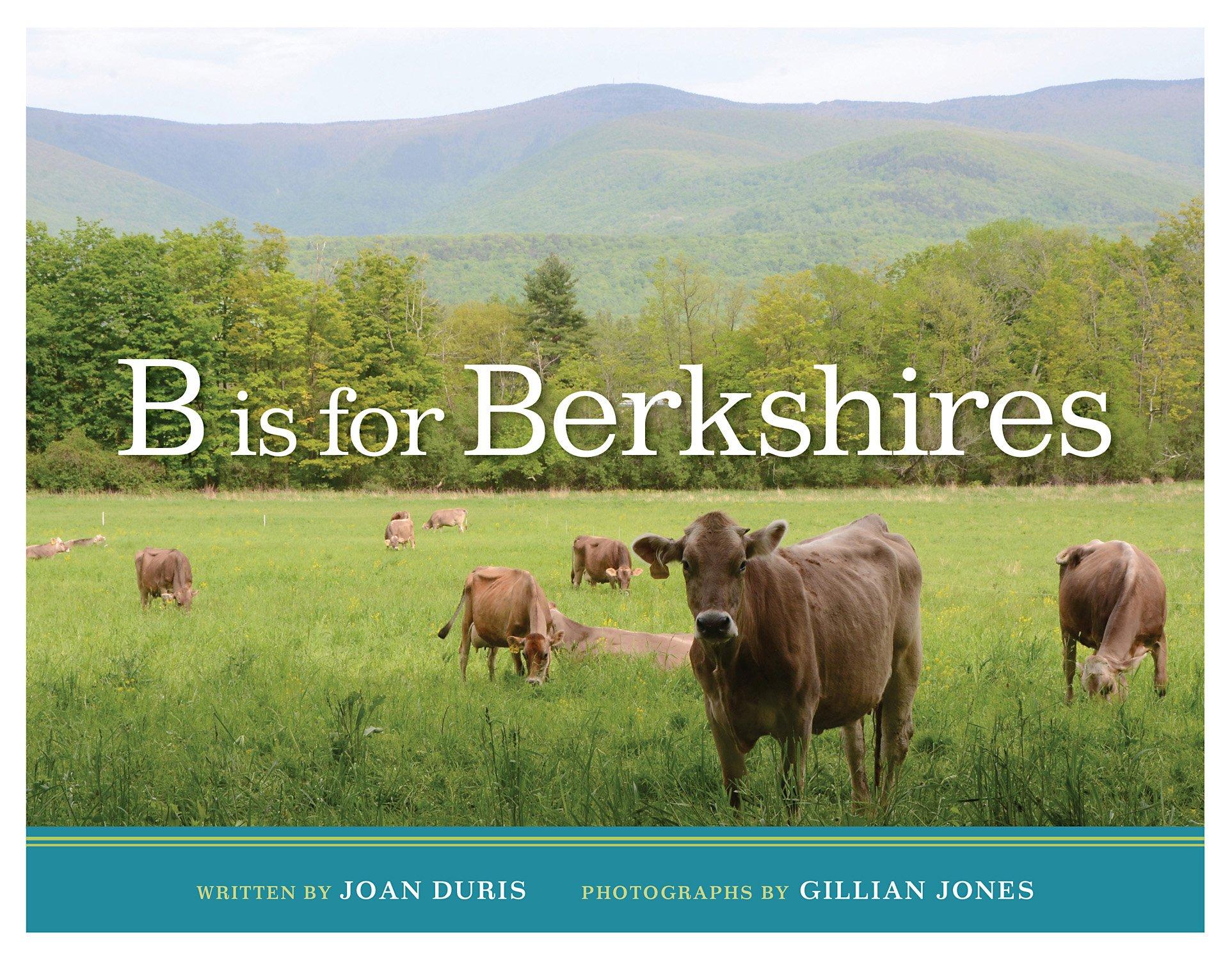 Read Online B is for Berkshires pdf epub