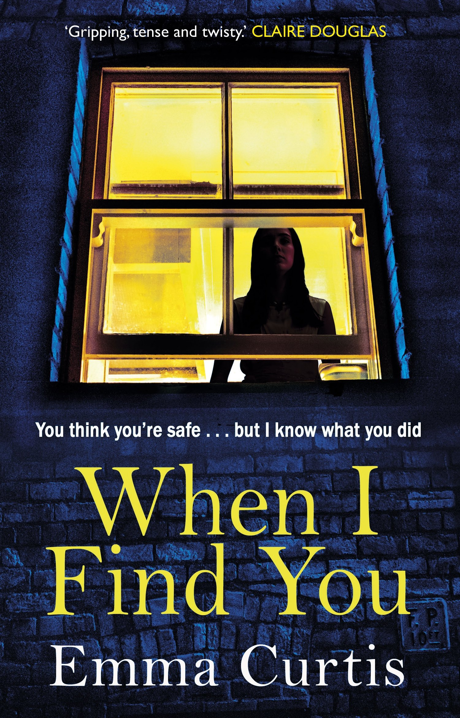 35afe0dd589 When I Find You  Amazon.co.uk  Emma Curtis  9781784164003  Books