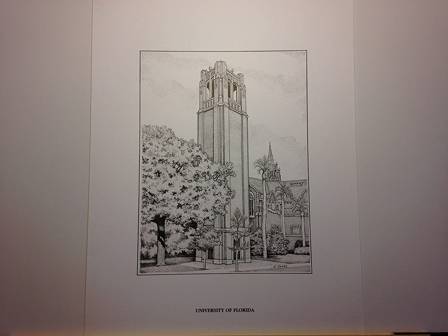 University of Florida Century Tower - 11x14 pen and ink print