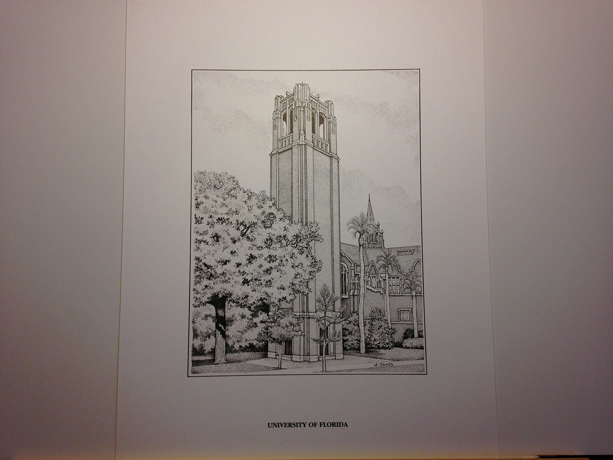University of Florida Century Tower - 11''x14'' pen and ink print