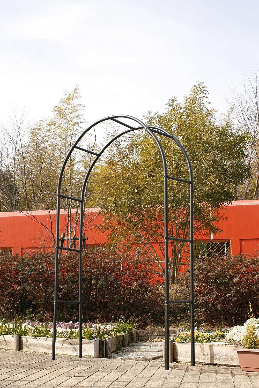 国華園 玄関 バラアーチ ゲート SP B014FFT03I