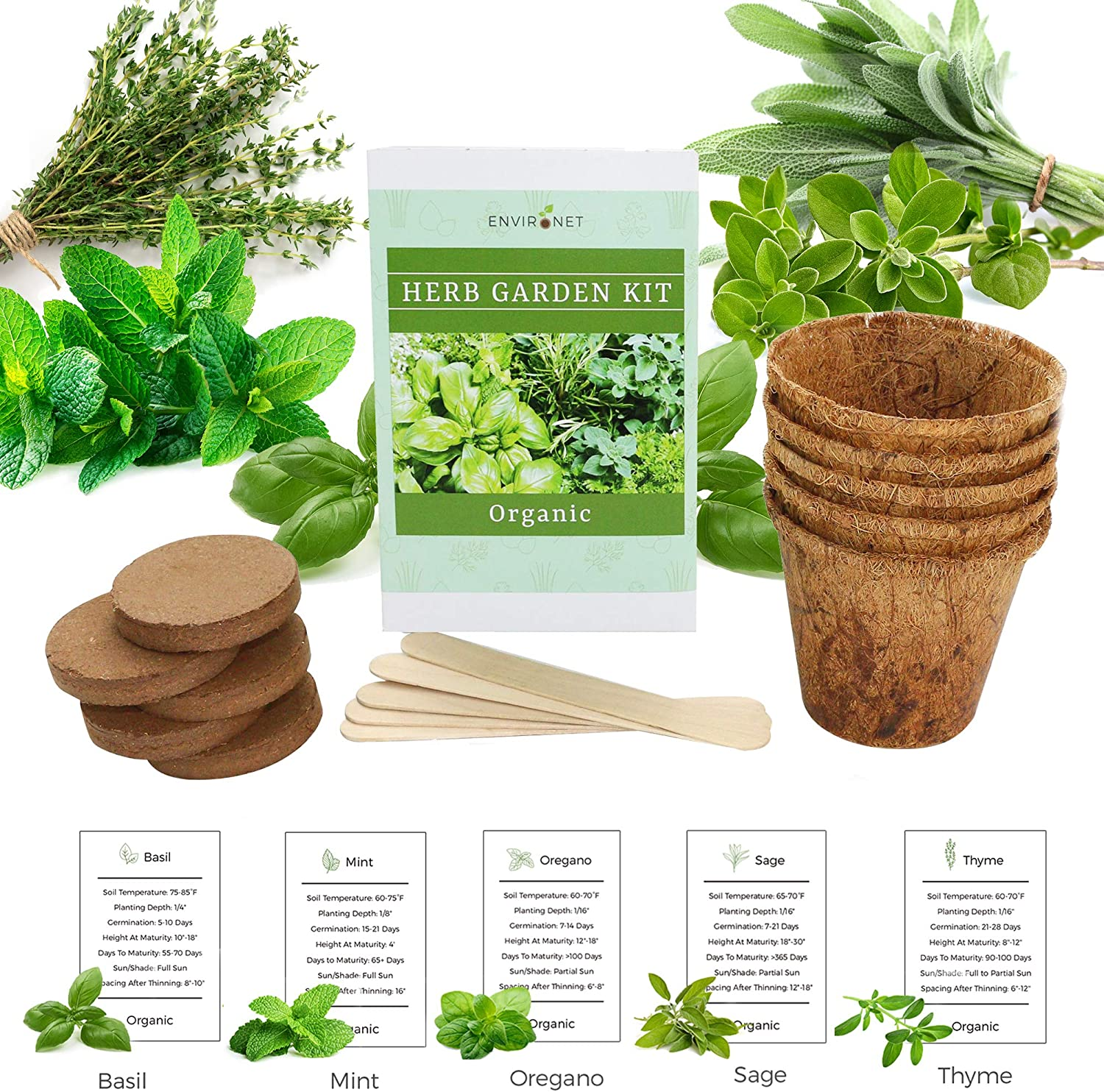 Environet Herb Garden Kit. Organic Seed Starter Kit Indoor. Grow 5 Different Herbs - Basil, Mint, Oregano, Sage and Thyme from Seeds at Home. Gardening and Home Decoration Gifts