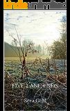 FIVE LANE ENDS