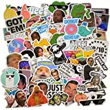 (106 Pcs) Funny Meme Vinyl Stickers Pack, Vine Stickers for Laptop, iPhone, Water Bottles, Computer, and Hydro Flask…