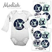 Modish Labels, 12 Monthly Baby Stickers, Baby Boy, Woodland, Deer, Antlers, Chevron, Mint, Navy Blue, Gray, Grey, Baby Month Stickers, Baby Book Keepsake, Photo Prop, Baby Shower Gift