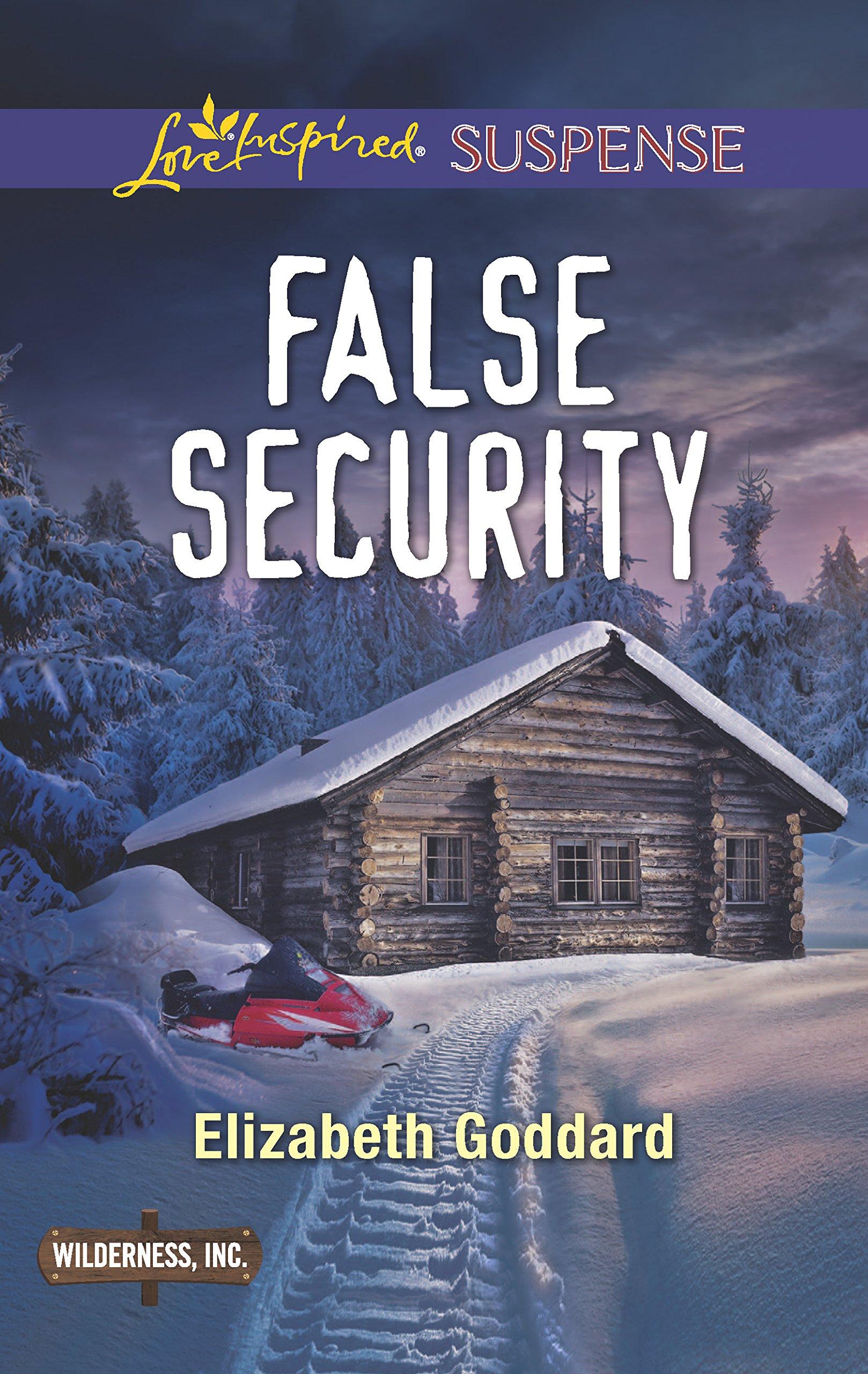 False Security (Wilderness, Inc.) pdf epub