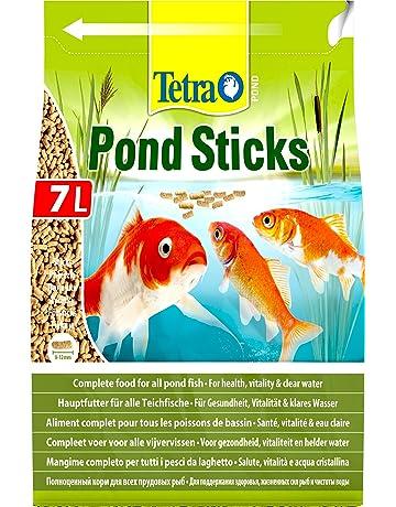 Fish and Aquatic Pets: Amazon co uk