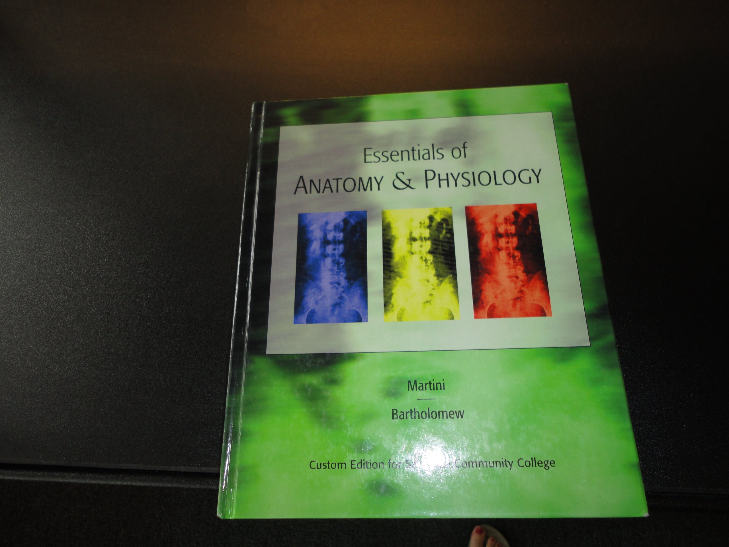 Essentials of Anatomy and Physiology: Amazon.es: Frederic Martini ...
