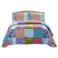 SLPR All is Bright 2-Piece Lightweight Printed Quilt Set (Twin) | with 1 Sham Pre-Washed All-Season Machine Washable Bedspread Coverlet
