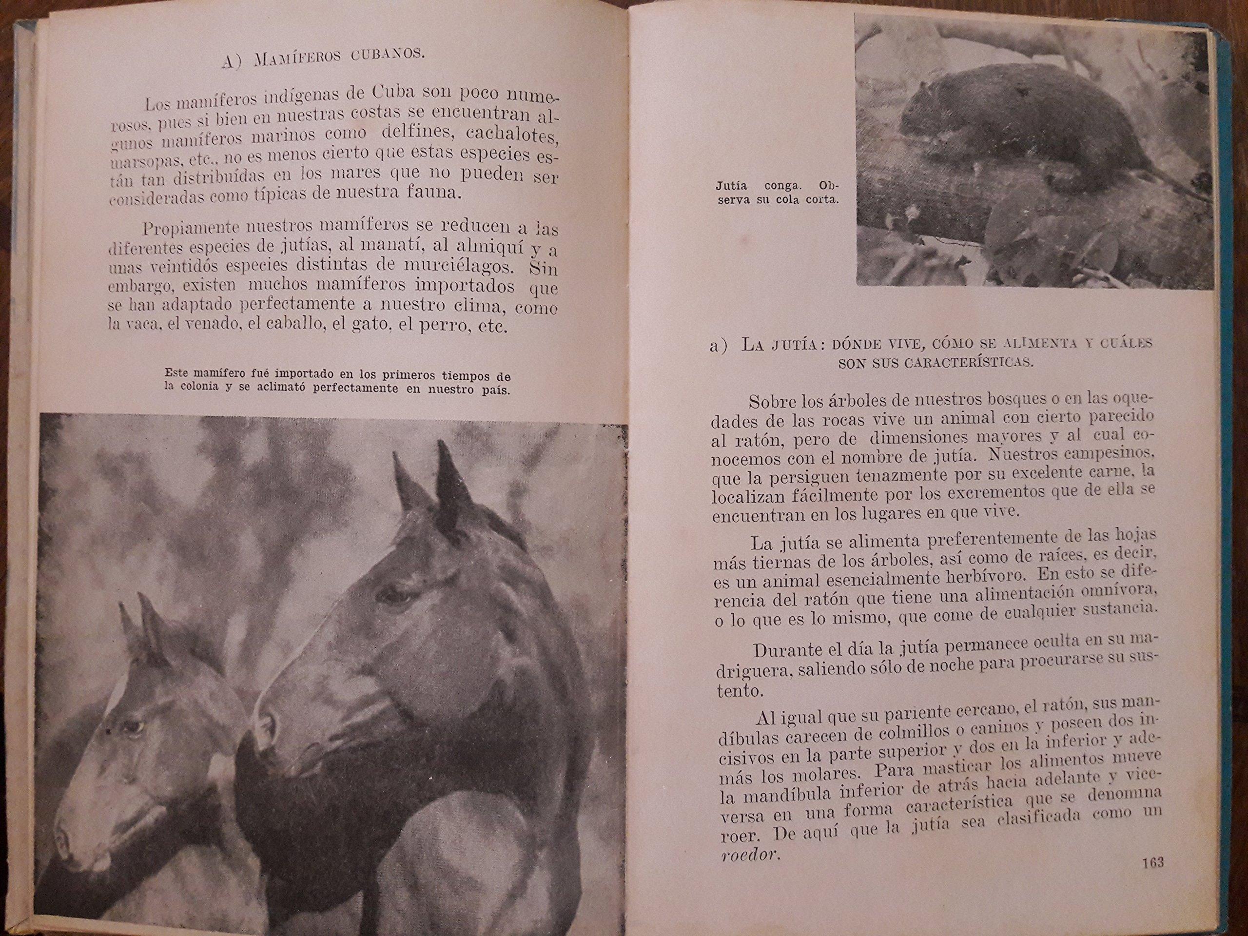 Estudios de la naturaleza, quinto grado.libro de texto de las escuelas cubanas.1949.: jose f wegener gonzalez: Amazon.com: Books